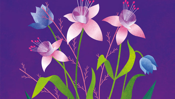 Illustration _Project _Flowers Previev