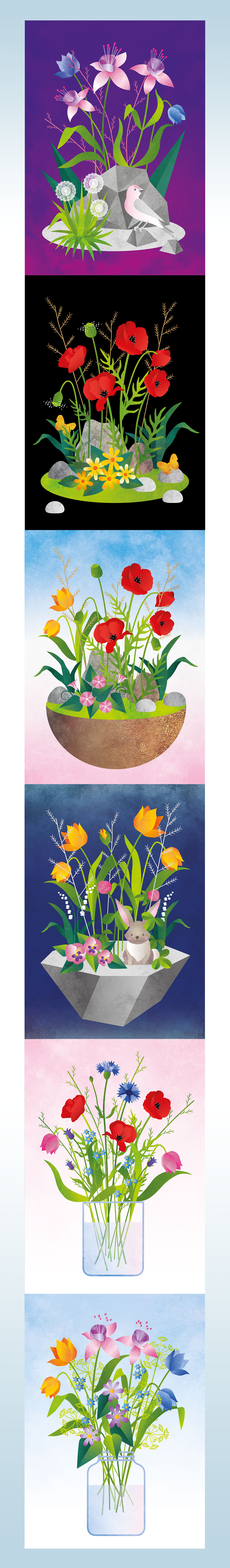 Illustration _Project _Flowers2